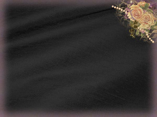 Black Onyx Dupioni Silk