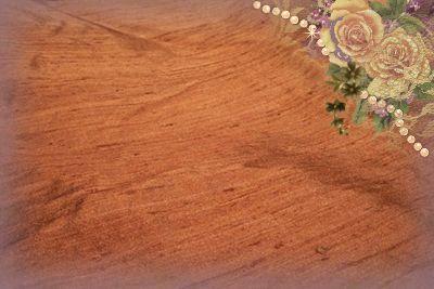 Cinnamon Dupioni Silk