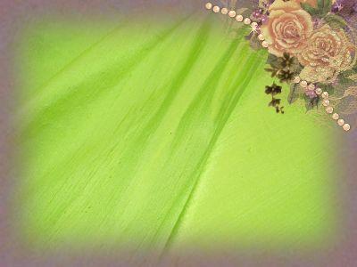Honeydew Dupioni Silk
