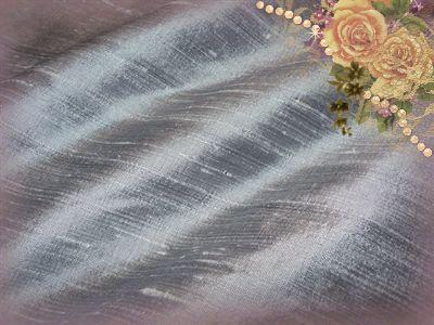 Platinum Dupioni Silk